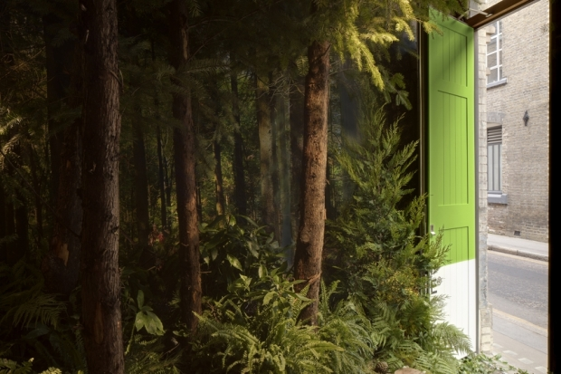 maison-greenery-pantone-airbnb-4